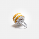 paris_brest_bague_02
